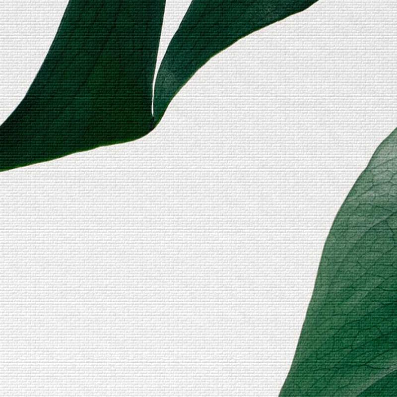 北欧新鮮な手のひらポスターやプリント壁アートキャンバス絵画の写真スカンジナビアモンステラ葉家の装飾