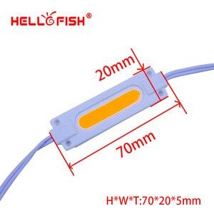 Image 2 - Светодиодные модули Hello Fish, 20 шт., 12 В постоянного тока, 7020 светодиодов, рекламные модули, светящиеся символы, модули для фоновой подсветки IP65, водонепроницаемые