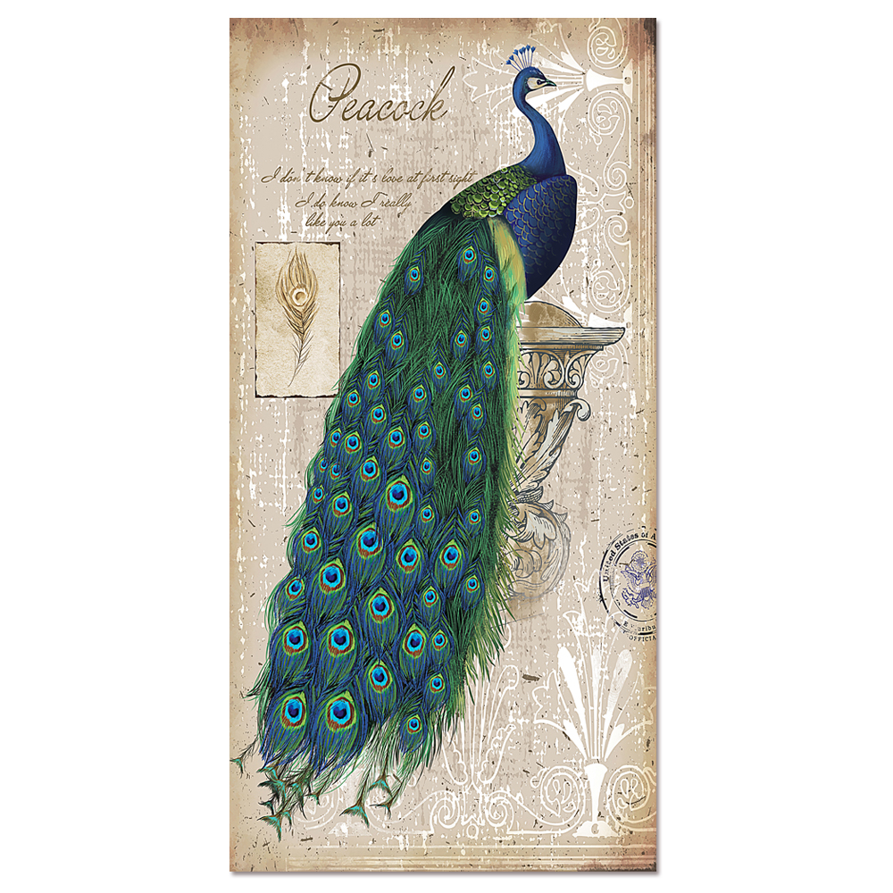 visual art decor elegant peacock painting canvas art print