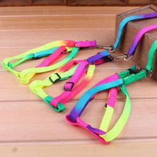 All Seasons 120cm Nylon Rainbow Pet Dog Collar Harness Leash Soft Walking Lead Colorful and Durable Traction Rope