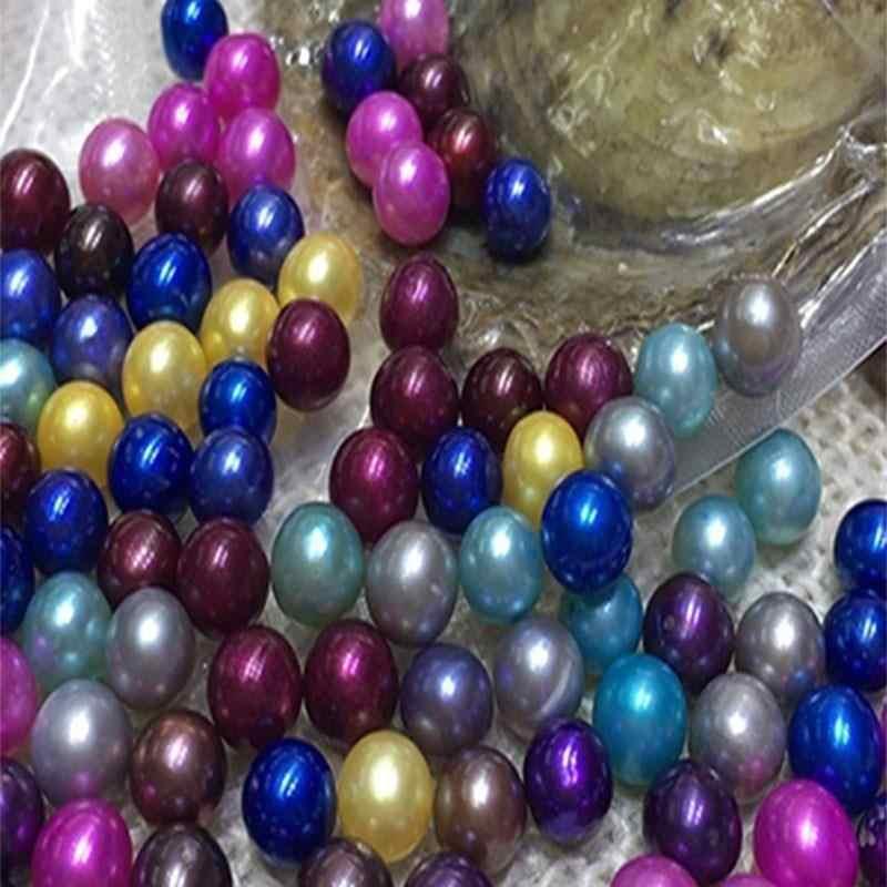 6 יח'\חבילה פרל ללא חור פנינת צדפה שבלול טבעי סגלגל חרוז צדפות סגנון תכשיטים מתנות