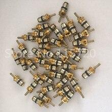20 шт. автомобиль AC R134A клапан основные иглы Ассортимент 134a хладагента термостойкие