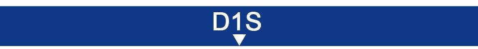 D1SD1S
