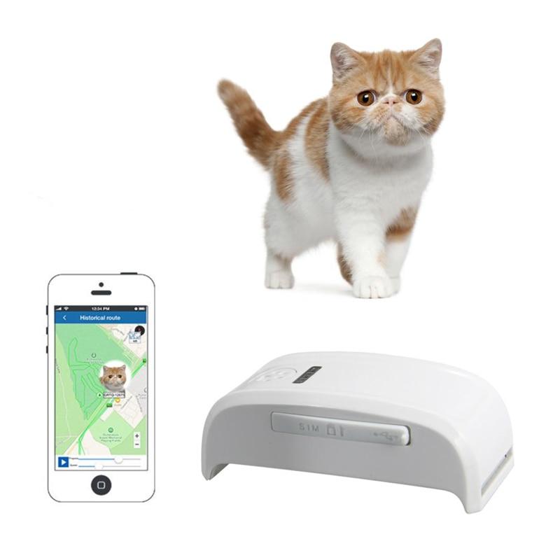 Le plus petit traqueur d'animal familier de GPS avec le collier GSM/GPRS plaçant en temps réel GPS dépistant l'animal familier de chien TK909 chien/chat/IOS/android App