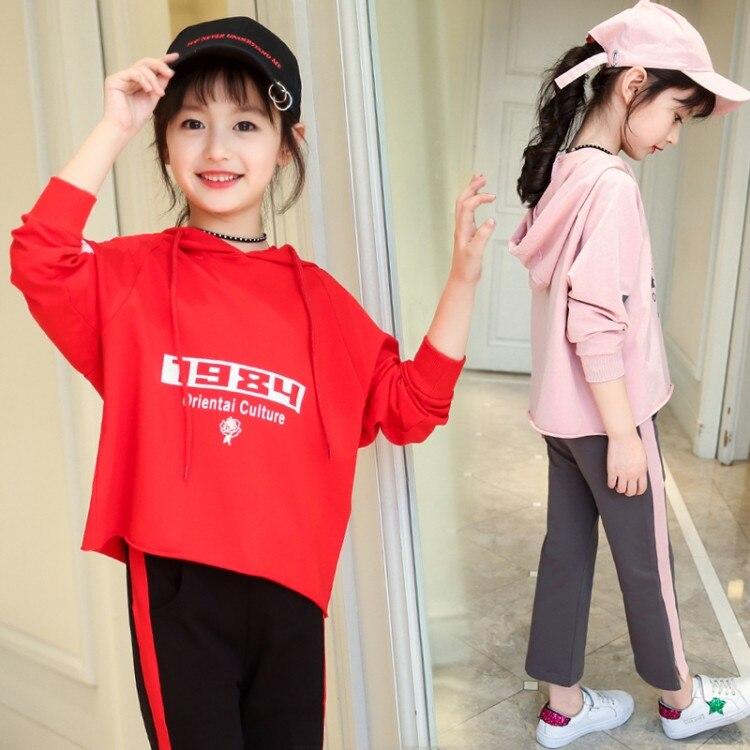 New 2018 Autumn spring Girls Set Cartoon Children Tracksuit kids clothing suit baby girls t shirt+pants 2 pcs sets suit 2 Colors