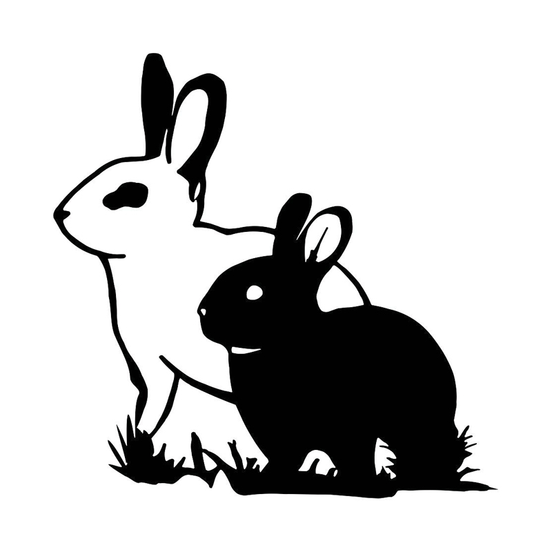 Qypf 14cm3 3cm Bunny On Board Black Silver Sticker Vinyl Car