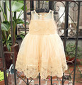 Girl's spring fasion lace tulle princess party  vest dresses , children costumes for girls , 5pcs/lot   YJ01