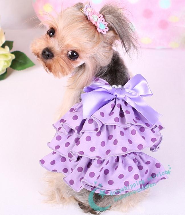 Encantador Perro Trajes Para Bodas Friso - Vestido de Novia Para Las ...
