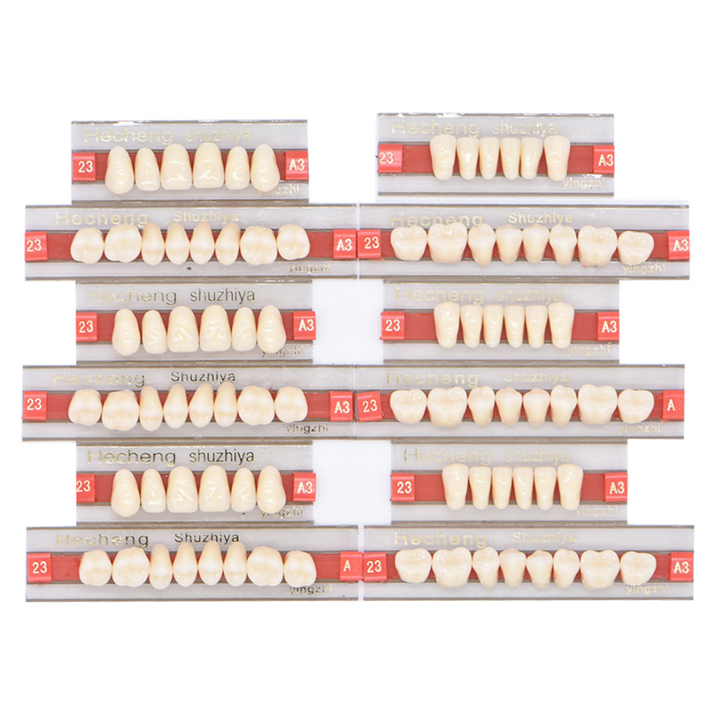 84pcs/box Size 23 Acrylic Resin Denture Teeth Upper Lower A2 A3 Oral Care Teeth Whitening Model Dental Materials Dental Tools