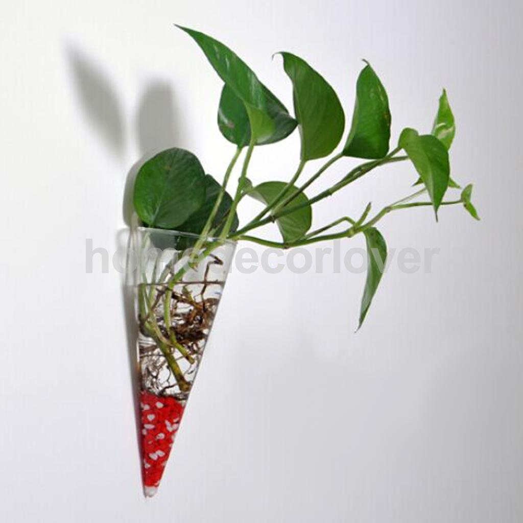 Wall vases for flowers - Cone Glass Hanging Plant Terrarium Bottle Flower Vase Pot Home Wall Decor