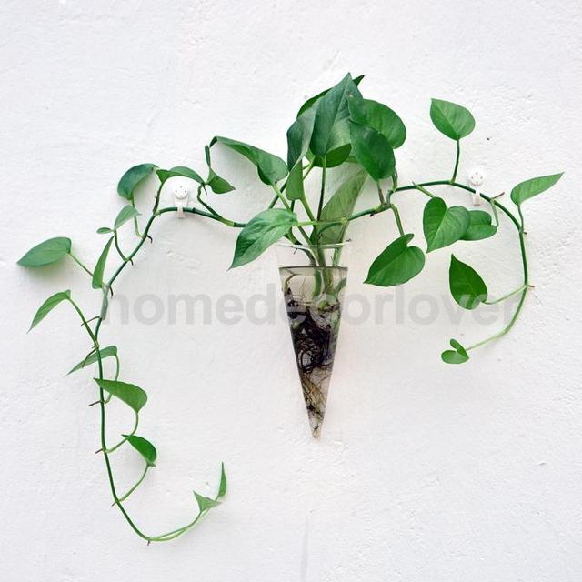 Aliexpress Buy Clear Cone Glass Wall Hanging Flower Vase Plant