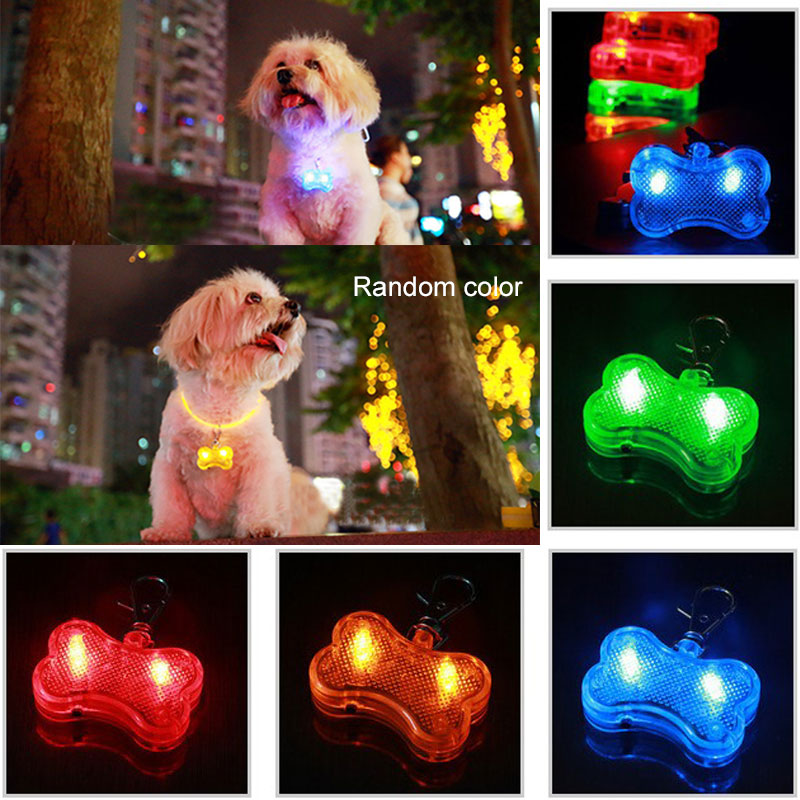 Cheap and beautiful light dog led tag in Light and Led