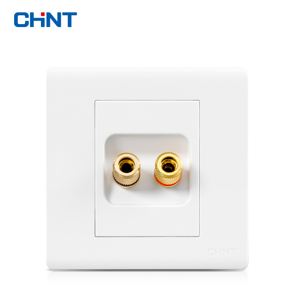 цена на CHINT Wall Switch Socket NEW7D Elegant White Two-hole Audio Socket Panel