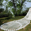 Amazing 5m Long Bridal Veil Lace Edge wit Appliques Luxury Wedding Accessory