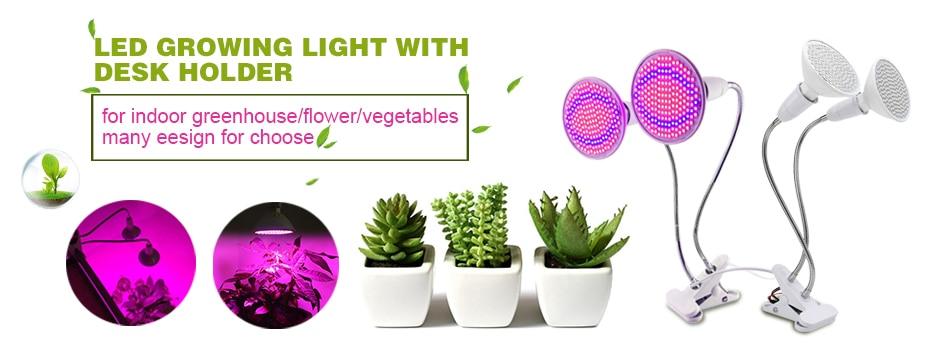 ᗛRAYWAY Geführte anlage Wachsen Licht T5 Röhre gemüse wachsen für ...
