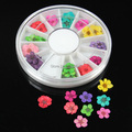 W39  36pcs/Set  Beauty 12 Colors Natural Dry Flower Nail Art Wheel Set Fashion Beauty  DIY Nail Accessories