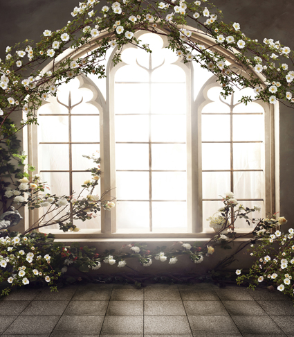 10x10ft indoor white flowers green branch sunshine lattice window
