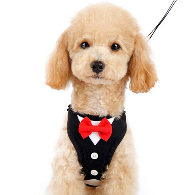 New Quality Cute Small Dog Harness Vest Soft Air Mesh Black Dog Tuxedo Collar Harness with Red Bow Male Pet Costume S M L
