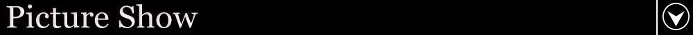 HTB1T581XyzxK1RjSspjq6AS