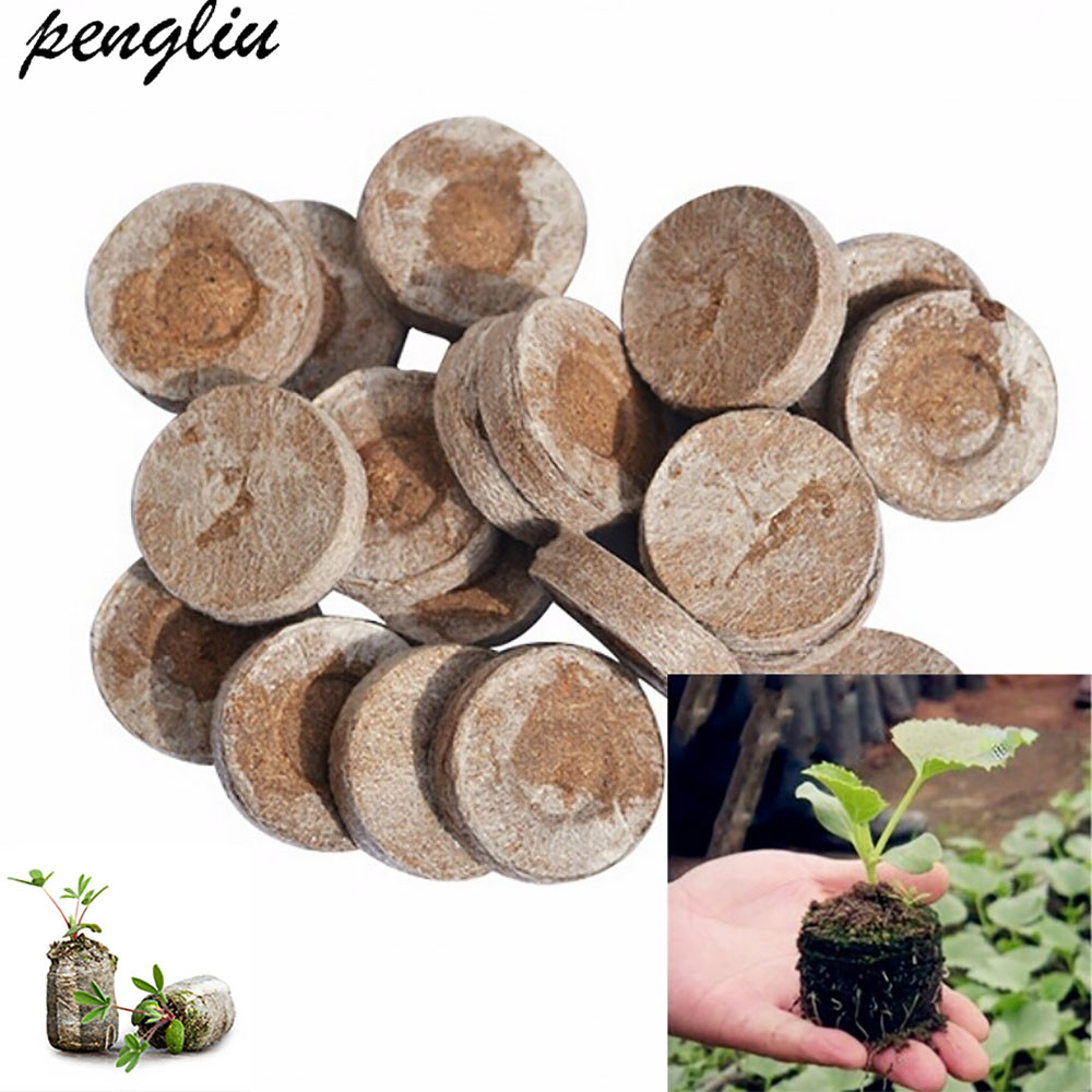 Starter-Pallet Plugs-Seeds Seedling-Soil-Block Jiffy Peat 30mm 5pcs-Pack IT094 Professional
