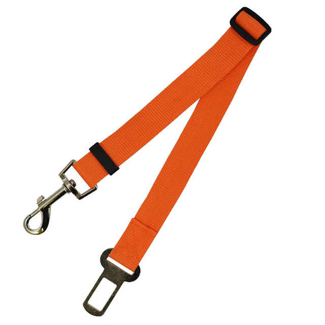 Safety Seat Belt Leads