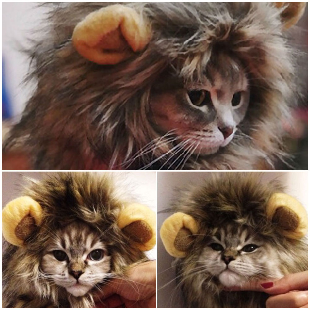 Furry Gatos Jouet Chat Katten Speelgoed Pet Hat Costume Lion Mane Wig For Cat Pets Halloween Fancy Dress Up With Ears Home