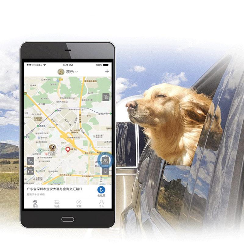 Dispositif de positionnement intelligent Anti-perte LBS pour chien et chat DC120