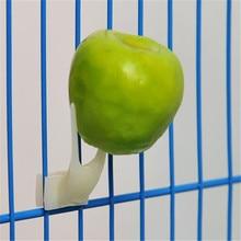 2 шт. птицы попугаи фрукты вилка товары для домашних животных пластиковый контейнер для еды кормления на клетке товары для домашних животных фруктовые закуски вилка