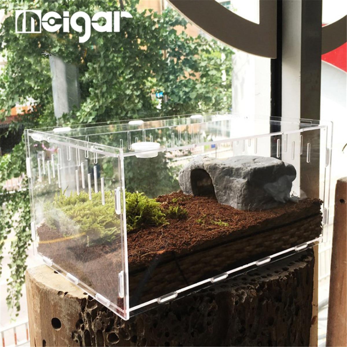Бак для рептилий насекомые пауки Черепаха Ящерица акриловая прозрачная коробка для разведения Vivarium крышка рептилия ПЭТ продукт Террариум S/L Размер Террариумы      АлиЭкспресс