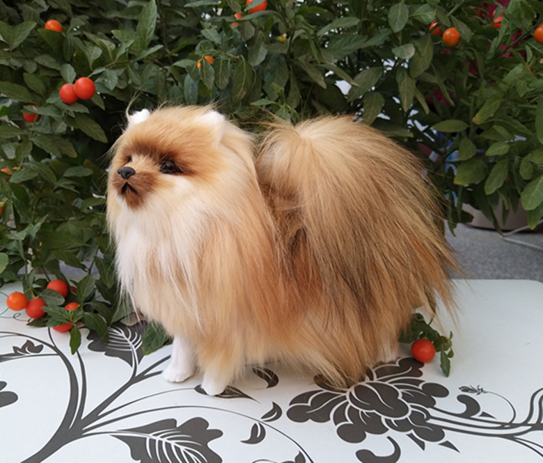 new simulation dog toy polyethylene & furs natural colour Pomeranian doll gift about 23x20.5x9cm 1185 simulation pomeranian dog 29x25cm hard model polyethylene