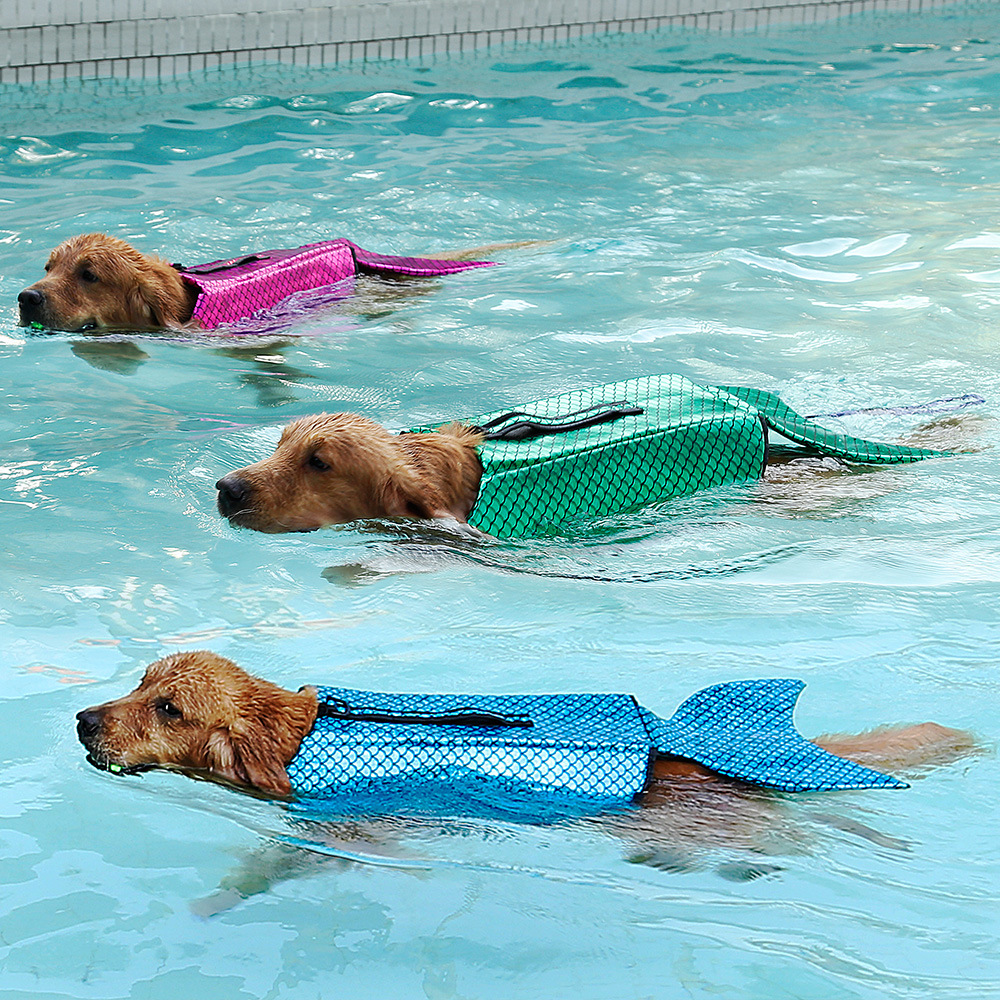 Cute mermaid dog costume 2