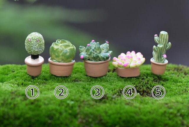 5pcsset resin succulents plants doll house miniatures lovely cute fairy garden gnome moss terrarium - Fairy Garden Plants