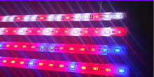20pcs/lot LED Grow Lights Lamp Tubes SMD5630 DC 12v 1m 18w Led Plant Blue Red White Aquarium Greenhouse Hydroponic Plant