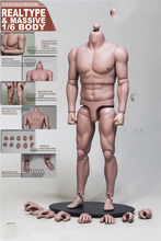1/6 Scale 12Mascular Male Bodies Big Body for Head