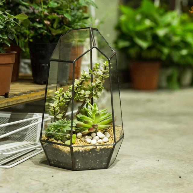 Ncyp 25cm Irregular Geometric Terrarium Garden Desktop Glass Flower