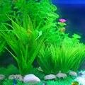"""Plastic Aquarium Decorations 5.91"""" Green Artificial Plastic Plant Grass FishTank Aquarium Ornament Decor"""