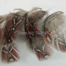 100 шт./лот! 5-12 см длинные натуральный Tragopan перьями фазана коричневый Craft Перья для ремесел и костюм