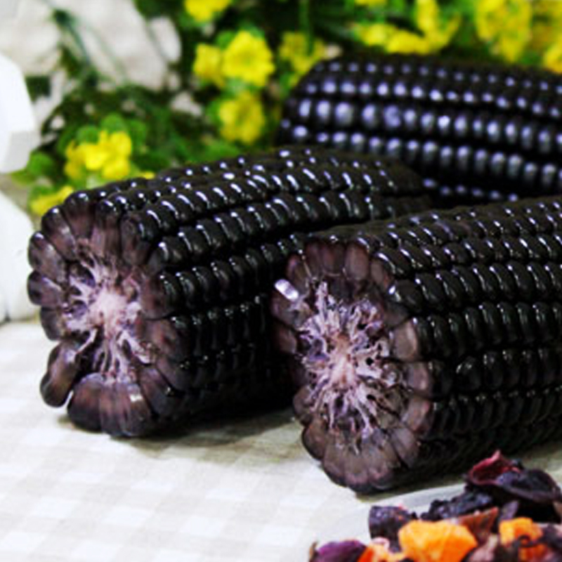 Direct Selling Rushed Summer Potted Vegetable Waxy Maize Garden Plants  Fruit Corn Seeds Fruits And Vegetables