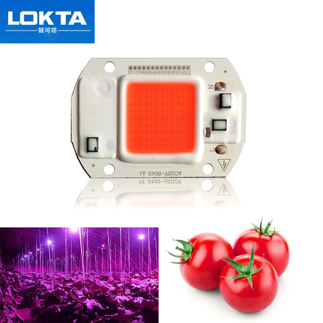 10PCS Led Grow Light Chip 20W 30W 50W Full Spectrum AC110V/220V Best For Hydroponics Greenhouse for DIY Growth Lamps