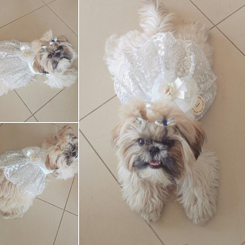 Kostumet e Nuseve Qeni Luksoze Princesha Qeni Qeni Dress Dasma Dress - Produkte për kafshet shtëpiake - Foto 6