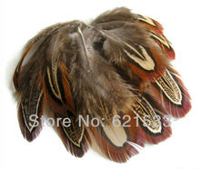 100Pcs/Lot 2-3 inches 5-7cm NATURAL ALMOND Ringneck Pheasant Plumage Feathers FREESHIPPING