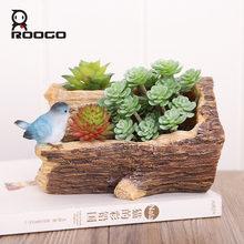Roogo суккулентные растения цветочные горшки очарование весны