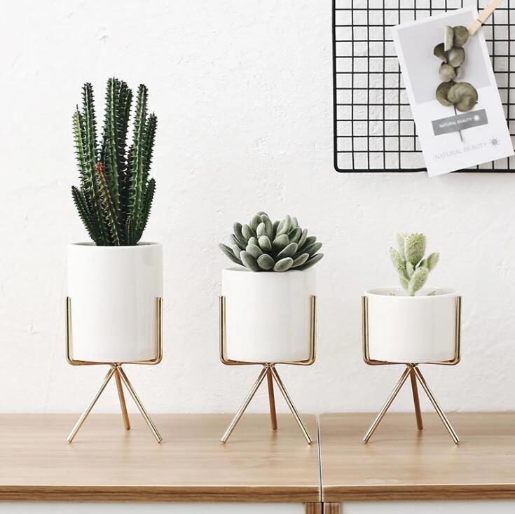 Techome 2021 Fashion Style Ceramic Flower Pot Elegant Gold Iron Frame Flower Plant Holder Succulent Pot Office Desktop Ornament Flower Pots Planters Aliexpress
