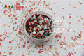 RF321-196 Mix Colors Dot shapes round  Glitter for nail art ,nail gel,makeup and DIY decoration