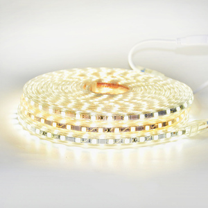 Image 3 - LED רצועת אור עמיד למים LED קלטת AC 220V SMD 5050 60 נוריות/m גמיש LED אורות לסלון חדר חיצוני תאורה עם האיחוד האירופי Plug
