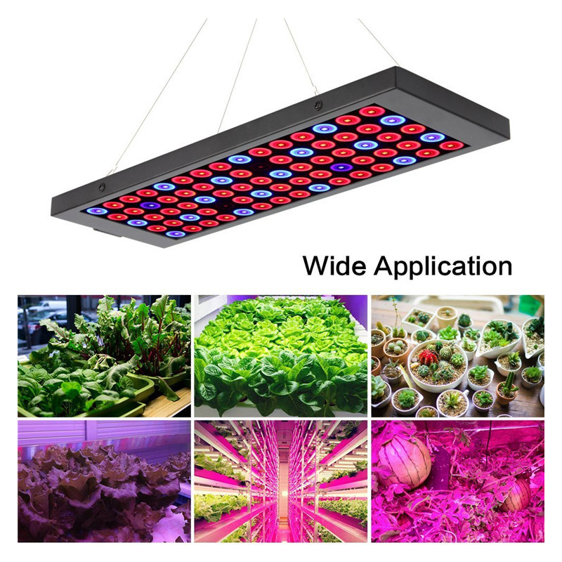 LED élèvent des lumières, panneau de spectre complet élèvent la lampe avec des LED d'ir et d'uv élèvent des lumières pour des plantes d'intérieur, des Micro verts, des Clones, des plantes succulentes, voir