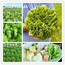 Cheap 200Pcs Italian Lettuce Seeds good taste organic edible delicious great salad choice DIY Home vegetable plants easy to grow