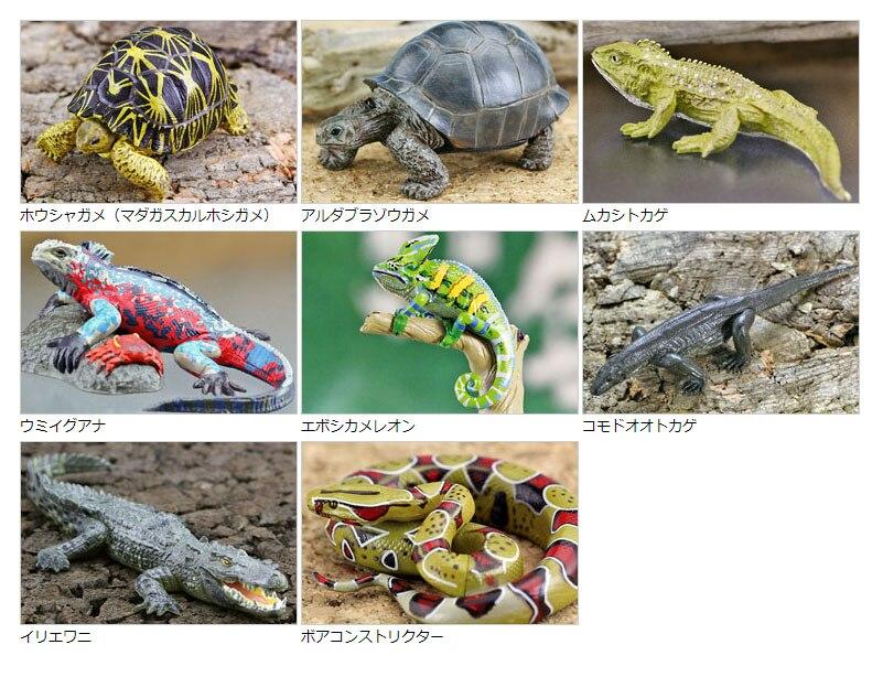Chiffres modèle Animal simulation jouets sauvage reptile lézard crocodile Guiyi 8 pcs/ensemble
