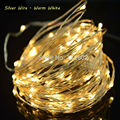 ERCHEN 10M 100led Silver/Copper Wire LED String Light With 12V1A(UK,US,EU,AU )Plug Adapter For Decoration Garden Fairy Lights