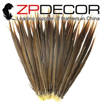 ZPDECOR 65-70cm(26-28inch) 50pieces Hand Select Dyed Natural Long Golden Pheasant Tail Feathers for Carnival Decoration